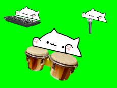 Bongo Cat - Live Purrrformace