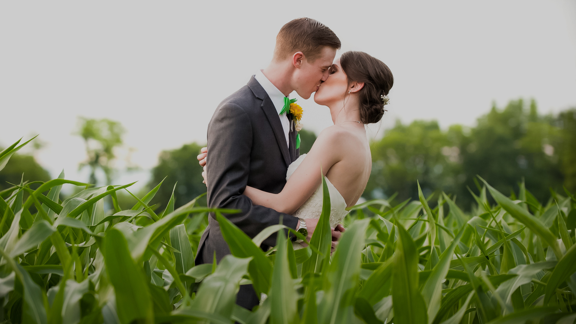 Check portfolios, pricing and availability for wedding photographers in Harrisburg