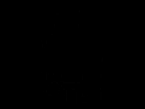K N Filters Logo