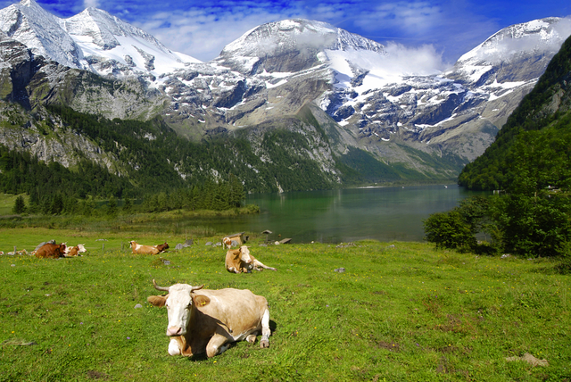 Step Back In Time With A Trip To The German Alps