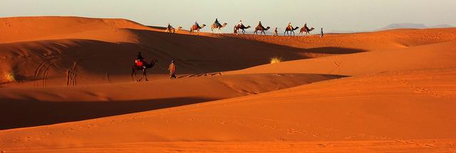 Morocco Camel caravan banner.jpg