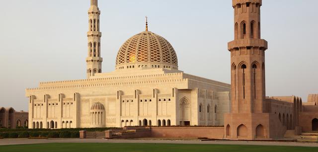 grand-mosquet.jpg