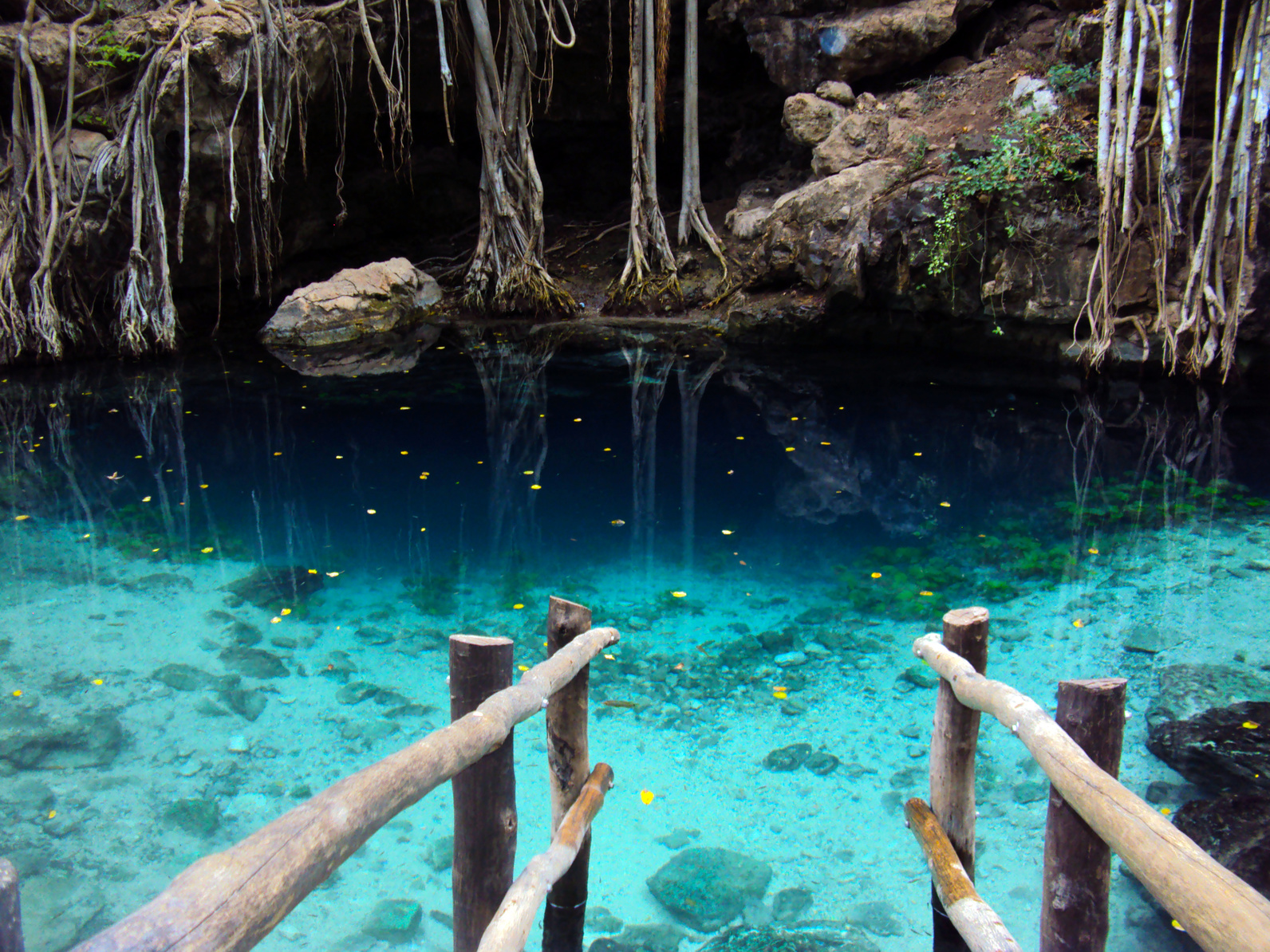 7 of riviera maya's best cenotes | uniglobe phillips travel
