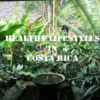Healthy Lifestyles in Costa Rica