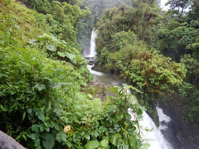 6 Reasons To Visit Costa Rica