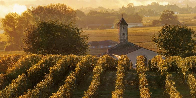 Bordeaux, Vineyards & Châteaux