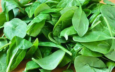 Suco verde de espinafre (para fertilidade)