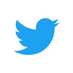 twitter parceiro guia-se negocios pela internet brooklin
