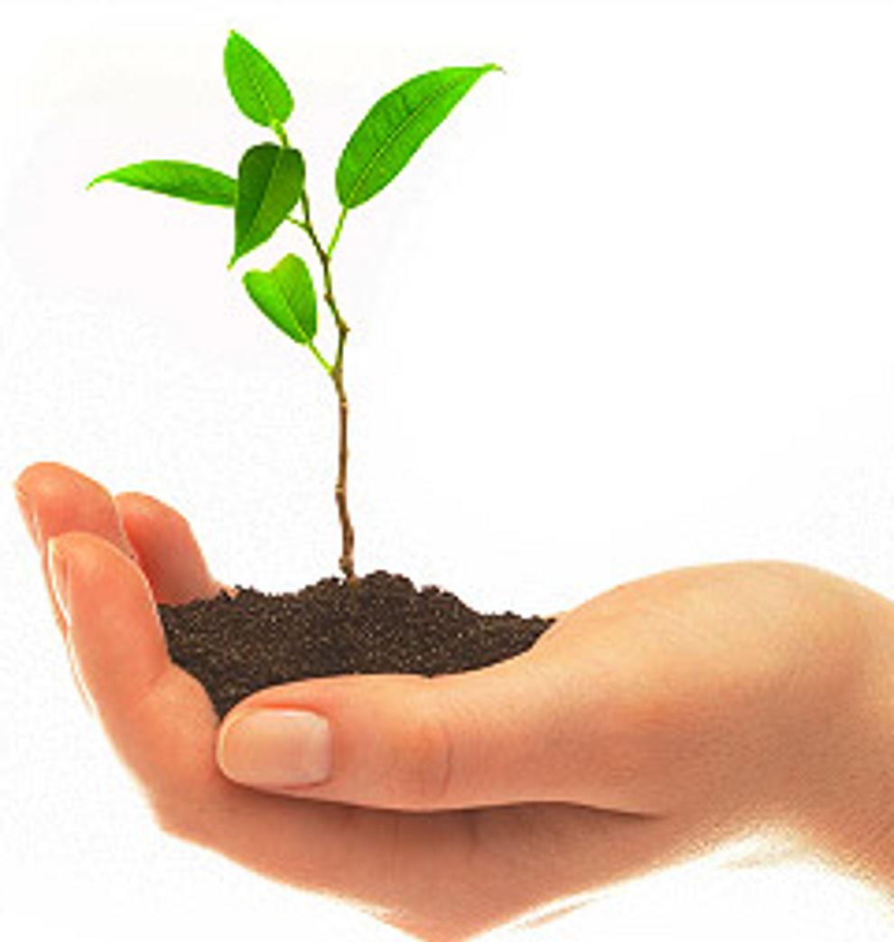 Isopor e sustentabilidade