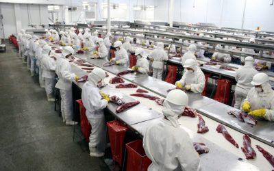 Carne bovina brasileira é exportada para mais de 135 países e gera receita de US$ 3,5 bilhões