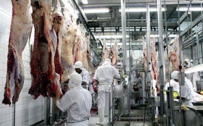 Exportação de carne bovina bate recorde e a China já é o principal mercado no exterior