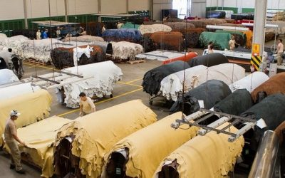 Exportações de couro brasileiro para a Rússia crescem mais de 700% de janeiro a agosto