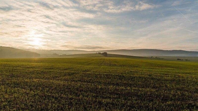 Camex aprova Estratégia Internacional do Agro