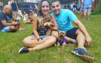 4º Bazar Pet Armandinho & Nina