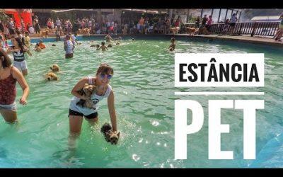 Eu, Você e os Pets no Estância PET