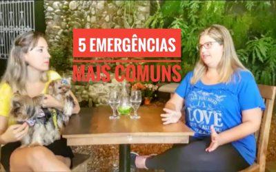 5 Emergências + Comuns com Cachorros