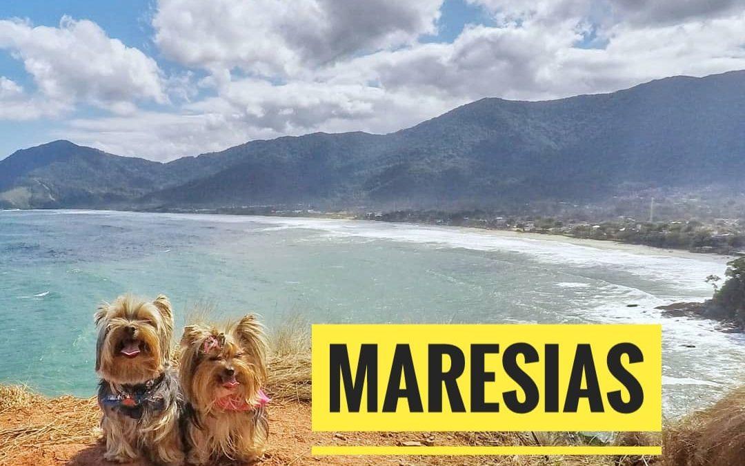 Eu, Você e os Pets em Maresias