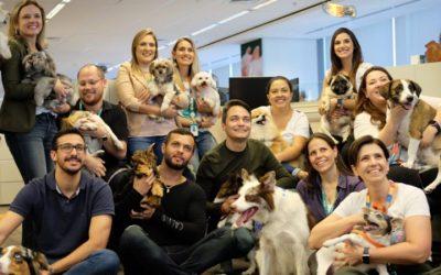 9 em cada 10 pessoas querem cachorro no ambiente corporativo