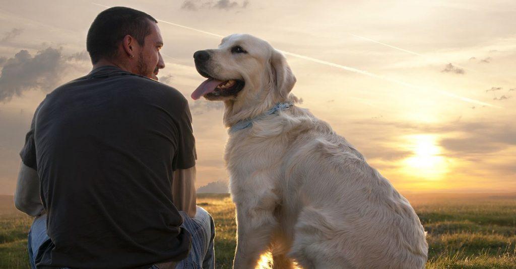 Cientistas dizem que possuir cão rejuvenesce dono em até 10 anos