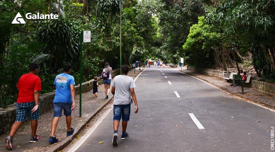 Quais os bairros mais procurados para aluguel de imóveis em Campinas?