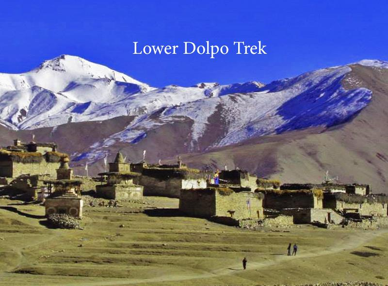Get Highly trekking serices with traveller safety