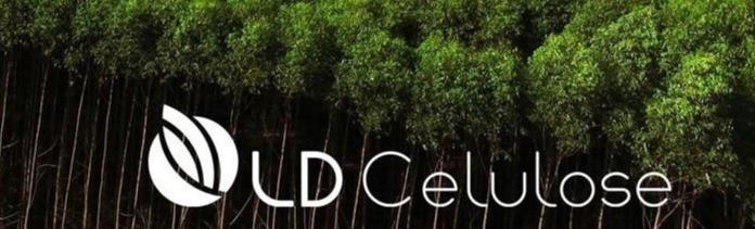Técnica ou Técnico de Produção Qualidade Florestal