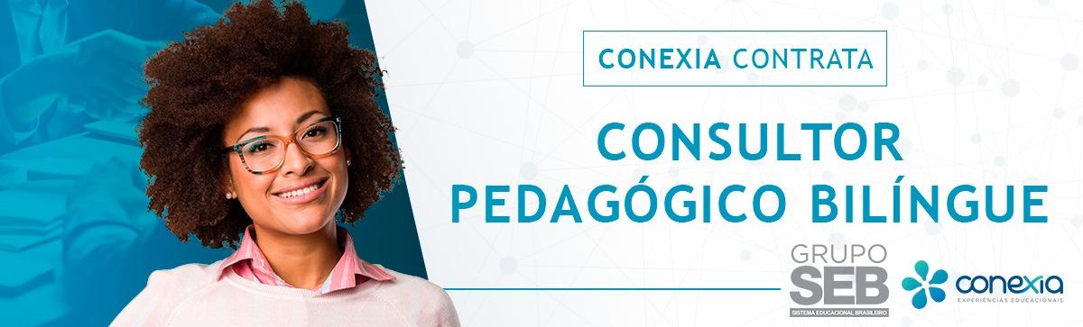 Consultor Pedagógico Bilíngue