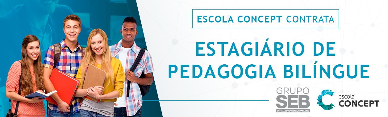 Estagiário de Pedagogia Bilingue