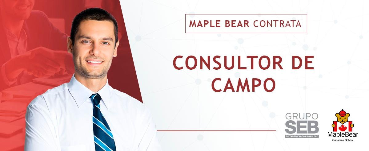 Consultor de Campo