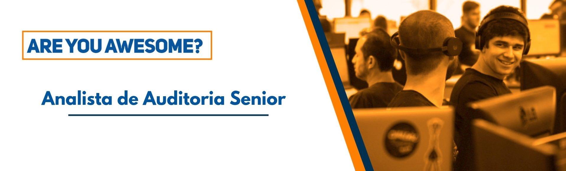 Auditor Interno Senior
