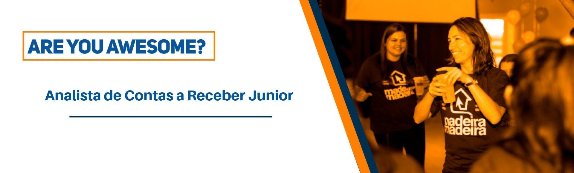Analista de Contas a Receber Junior