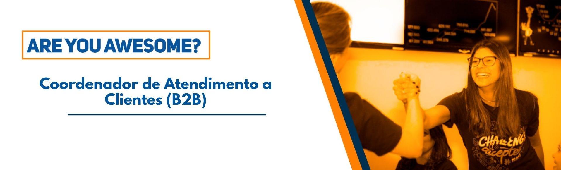 Coordenador de Atendimento a Clientes (B2B)