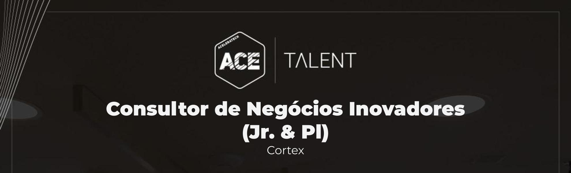 Consultor de Projetos Inovadores (Jr. & Pl)