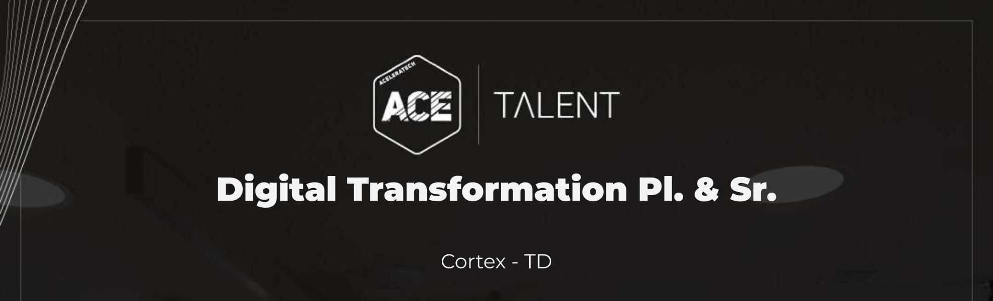 Digital Transformation Pl. & Sr.