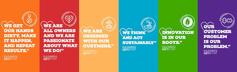 Analista de Customer Success - Campinas Jr. Pl. Sr.