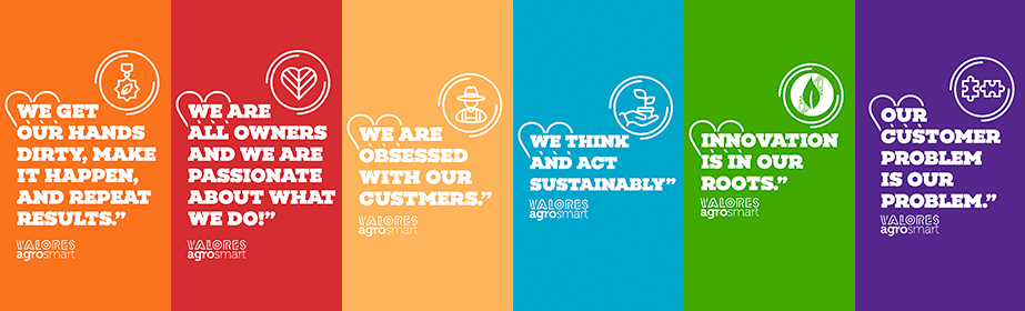 Analista de Customer Success - Mato Grosso do Sul - Jr. Pl. Sr.