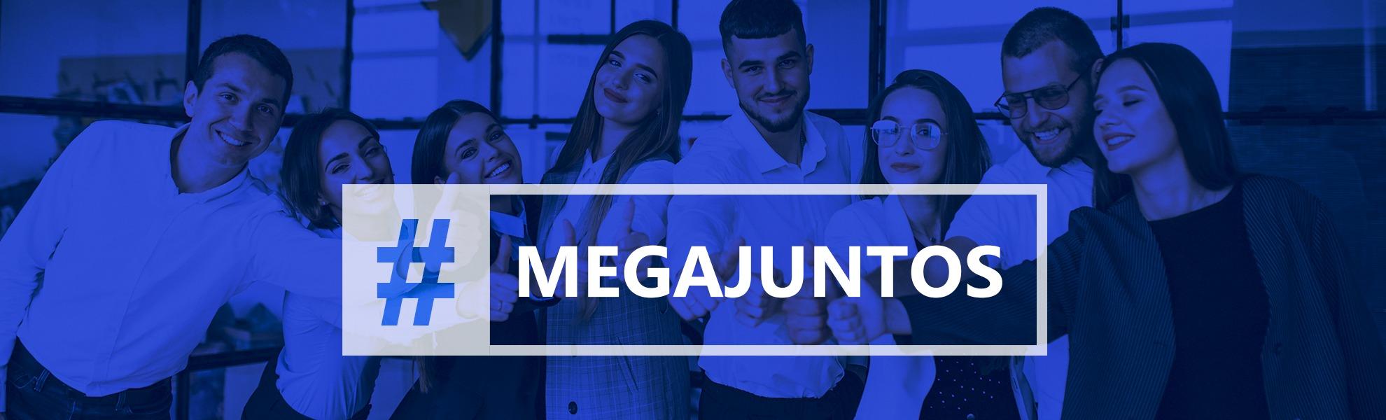 Megawork  Gold Partner SAP