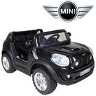 Mini_negro