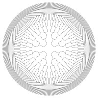 B&W Circle Pedigree