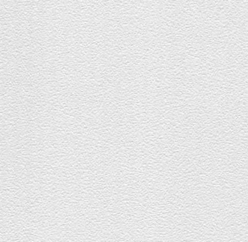 1/2 in x 2 ft x 4 ft CertainTeed Envirogard Trim Panel / White - 1190-CRF-1