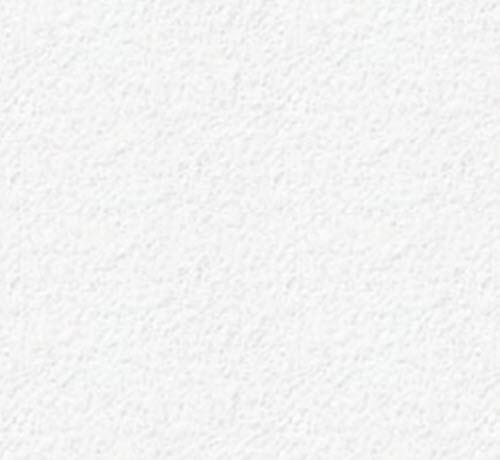 1 in x 2 ft x 4 ft Rockfon Sonar Angled Tegular Panel / White - 16301