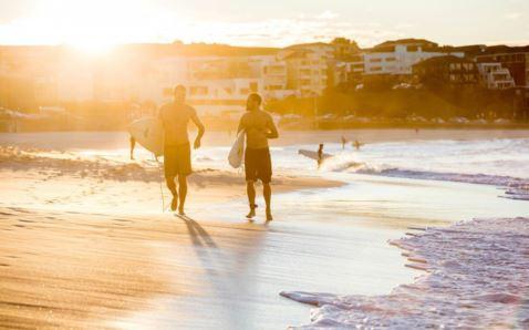surfing in bondi