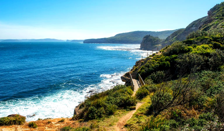 mt bouddi walks