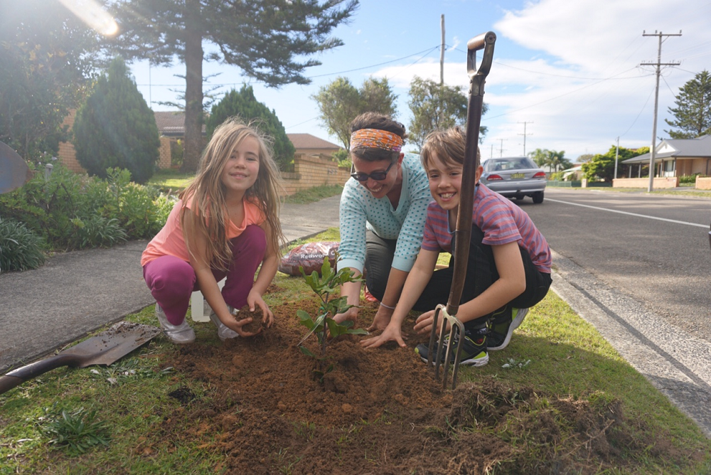 Tree Planting Projects | uminabeach.com.au