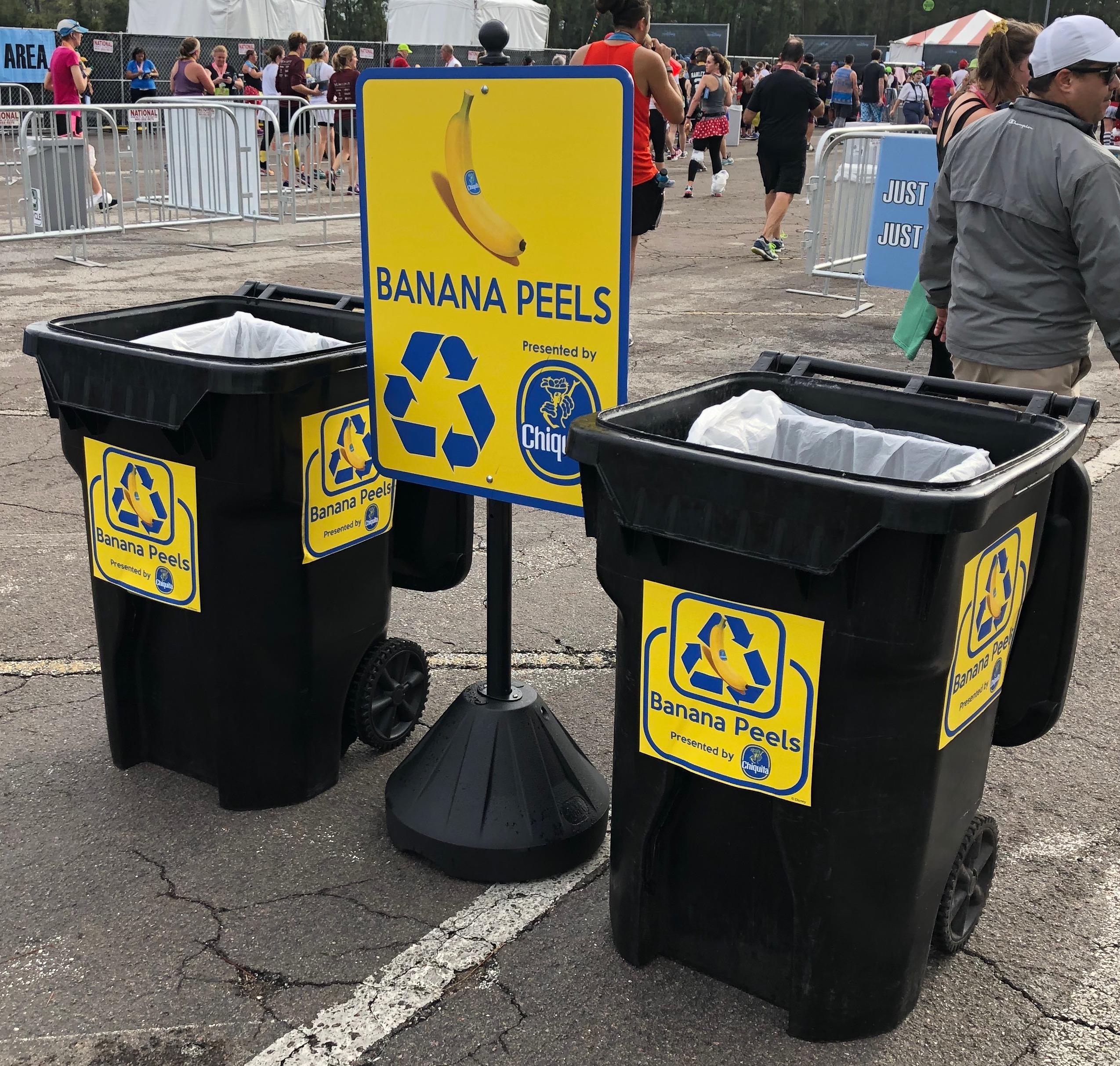Disney Environmentality