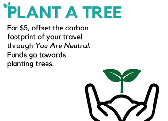 Offset Your Carbon Footprint