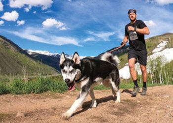 BARK SUPER CHEWER Rocky Dog Trail Run