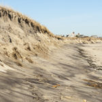 Controlling Coastal Erosion and Creating Living Shorelines