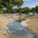 Restoring Natural Areas in New York