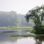 Indiana Wetlands Law and Compliance